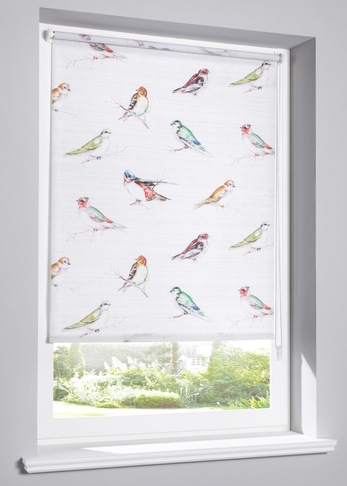 Rolgordijn Birds