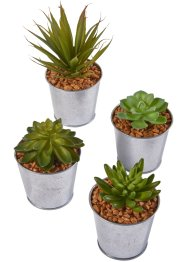 Kunstplant in metalen pot (4-dlg. set), bpc living bonprix collection