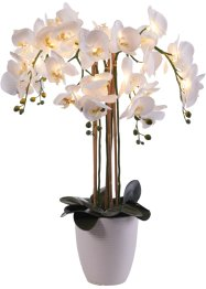 LED kunstbloem orchidee, bpc living bonprix collection